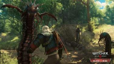 The Witcher 3 Blood and Wine Pictures